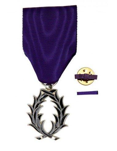 Chevalier de l'Ordre des Palmes Académiques en bonze argenté (grade Ordonnance). Fixe ruban hommes ou femmes en option.