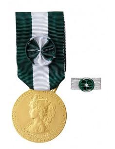 Médaille d'Honneur Régionale, Départementale et Communale Argent 35 ans en Bronze doré. Rosette en option. La médaille d'Honneur