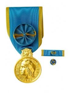 Médaille d'Honneur de la Jeunesse et des Sports, échelon Or en bronze doré. Fixe ruban et barrette dixmude en option. La Médaill