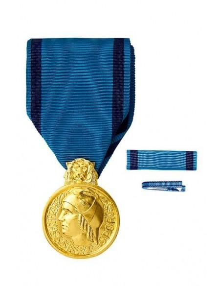 Médaille d'Honneur de la Jeunesse et des Sports, échelon Bronze en bronze doré. Fixe ruban et barrette dixmude en option.