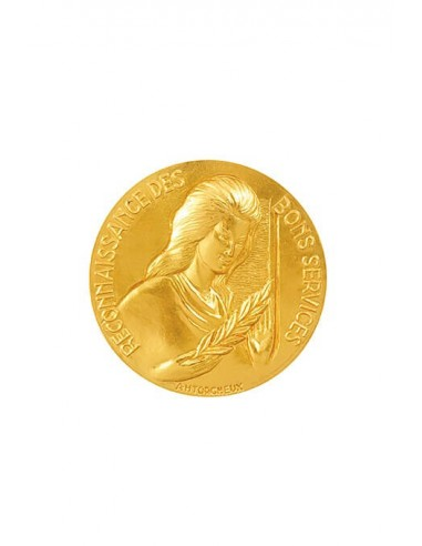 Médaille Or Reconnaissance des Bons Services en bronze doré.