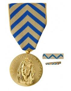Médaille Reconnaissance de La Nation en bronze doré. Fixe ruban et barrette dixmude en option La Médaille Reconnaissance de La N