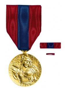 Médaille Défense Nationale Bronze en bronze doré. Fixe ruban et barrette dixmude en option La Médaille Défense Nationale Bronze