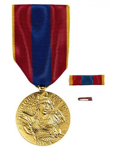 Médaille Défense Nationale Vermeil en bronze doré. Fixe ruban et barrette dixmude en option