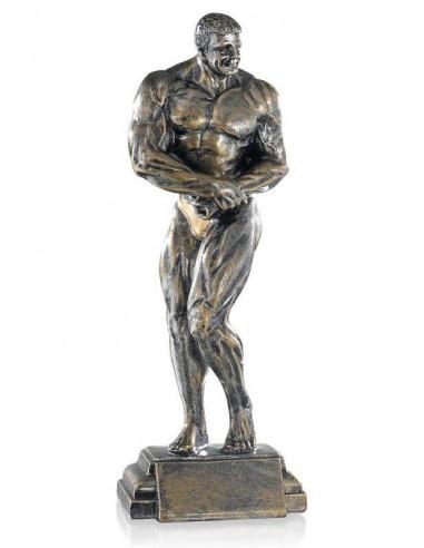 Résine musculation masculin hauteur 27cm