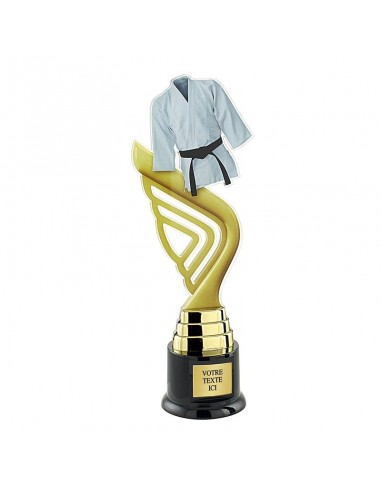 Trophée judo 31cm