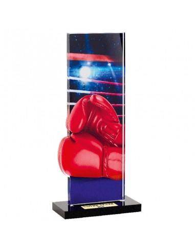 Trophée Boxe 22cm