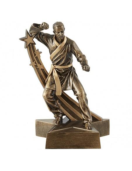 Trophée résine Karate hauteur 20 cm
