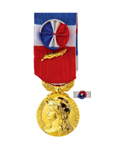 Médaille du Travail Or 35 ans en Bronze Doré.